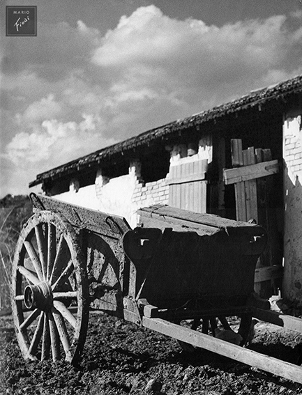 Rústico (c.1950)
