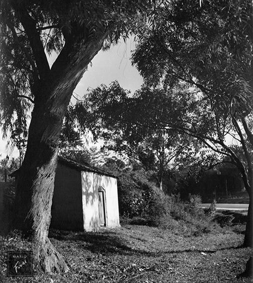 Beira da estrada (c.1950)