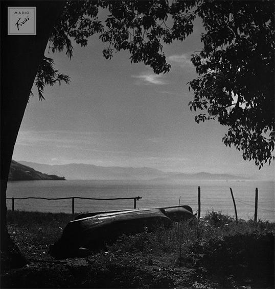 Sem título (c.1950)