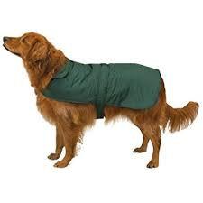 Barn Dog Coat by Casual Canine