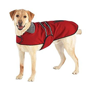 Reflective Dog Coat by Casual Canine