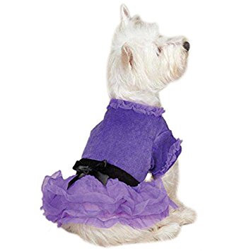 Purple Velour Dog Tutu Dress by Zack & Zoey