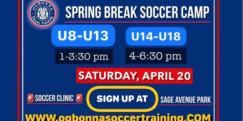 Spring Break Soccer Camp