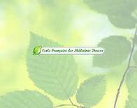 Ecole_Française_Des_Médecines_Douces.jpg