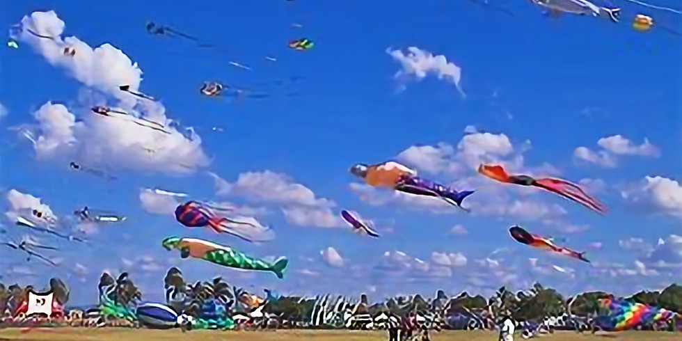 Reecliffe kite flying
