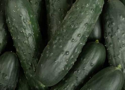 Concombre Noa - par pièce - 2,98€/kg