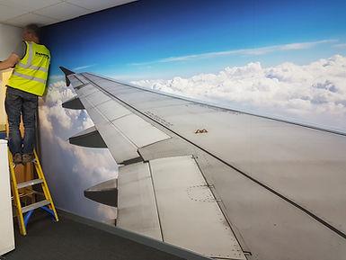 safran wing.jpg