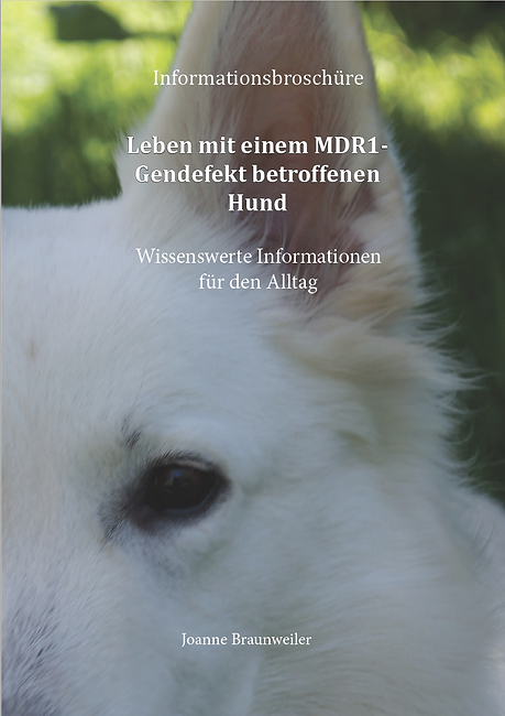 MDR1_Broschüre.PNG