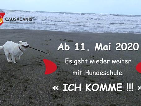 Ab 11. Mai 2020 ist die Hundeschule wieder offen