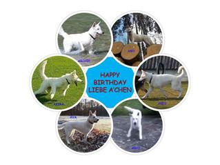 HAPPY BIRTHDAY liebe A'chen