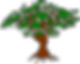Baum transparent.png