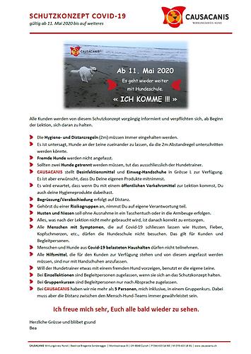 Schutzkonzept Causacanis.PNG