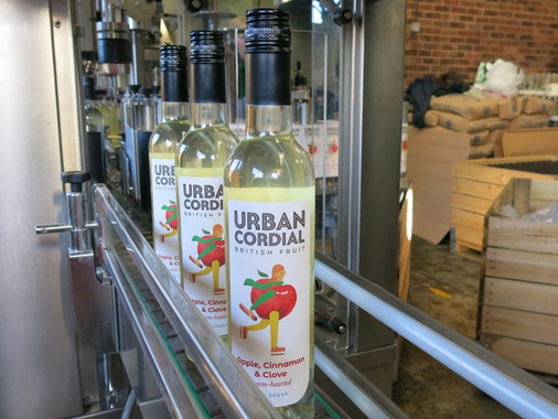 Interview: Natasha from Urban Cordial made from Surplus British Fruits!