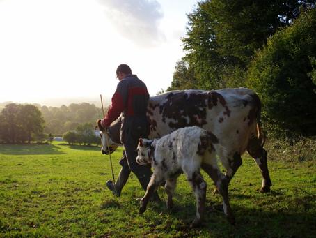 Revalorisation des pensions de retraite des agriculteurs