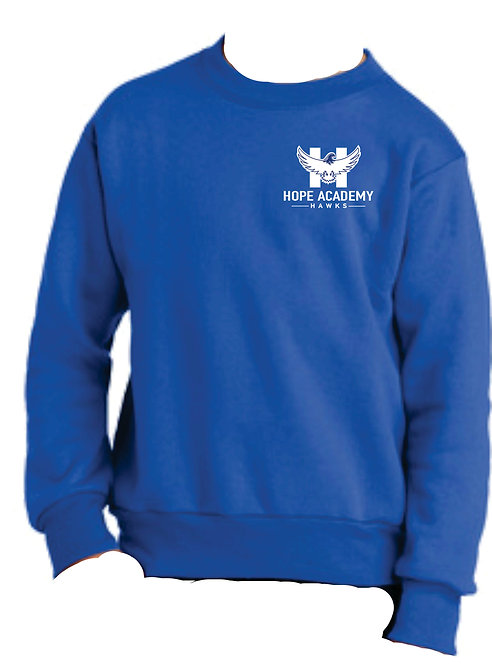 Hope Academy Youth Sweatshirt