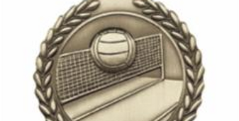 "Standard Die Cast 2 3/4"" Volleyball Gold Medals"