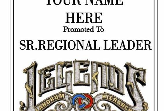 Senior Regional Leader