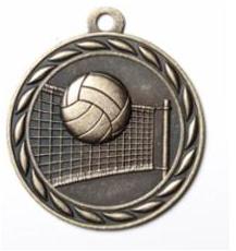 "Standard 2"" Volleyball Gold Medals"