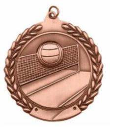 """Standard Die Cast 2 3/4"""" Volleyball Bronze Medals"""