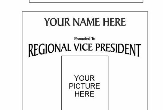 RVP Plaque