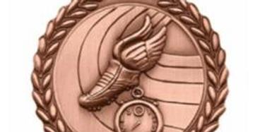 """Standard Die Cast 2 3/4"""" Track Bronze Medals"""