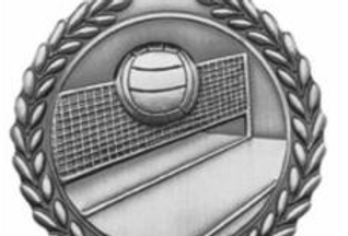 "Standard Die Cast 2 3/4"" Volleyball Silver Medals"