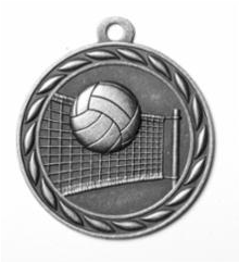 """Standard 2"""" Volleyball Silver Medals"""
