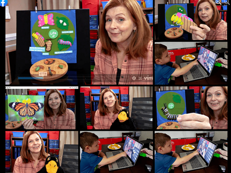 Reaching Our Youngest Children: Tips For Teaching Virtual Preschool Online BY DENISE SHIELDS