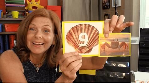 virtual preschool free summer camp seash