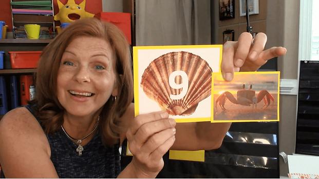 Summertime Mini Lesson Seashell Numbers.