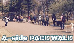 ※募集締切りました※ 10/28(日) A-side PACK WALK!