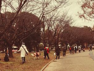 1/27(日) A-side PACK WALK 参加者募集します!