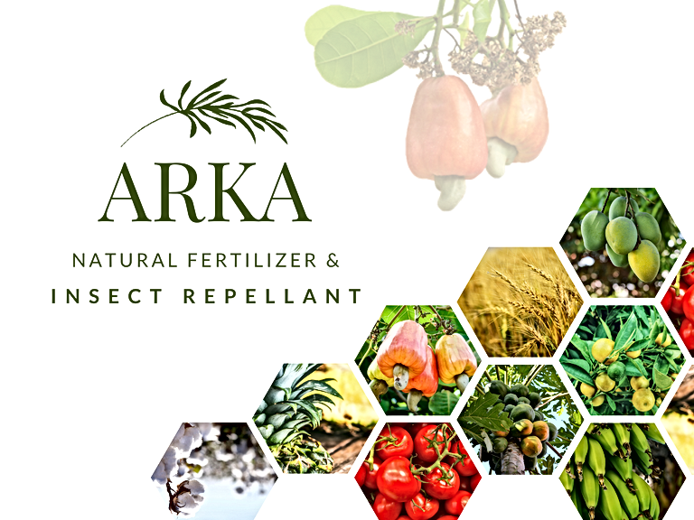 ARKA Poster(1).png