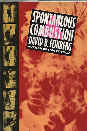 Spontaneous Combustion by David Feinberg