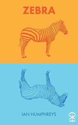 Zebra by Ian Humphreys