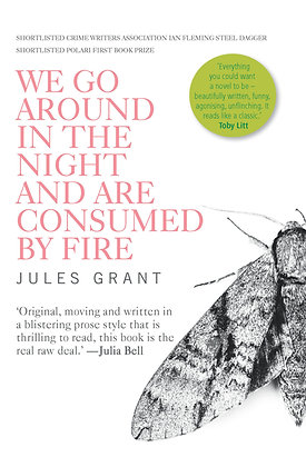 We Go Around in the Night and Are Consumed by Fire by Jules Grant