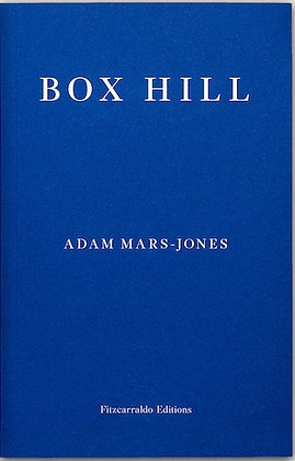 Box Hill by Adam Mars-Jones