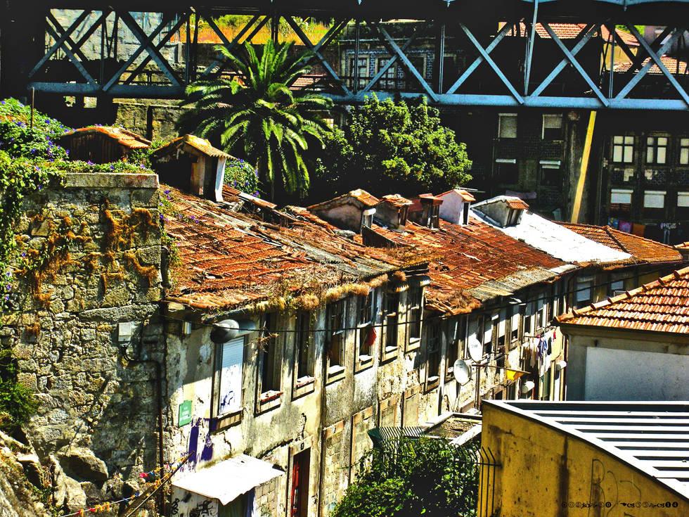 Porto végétal