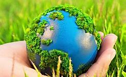 Экологический проект Полёвка
