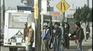 Undocumented migrants at work in America