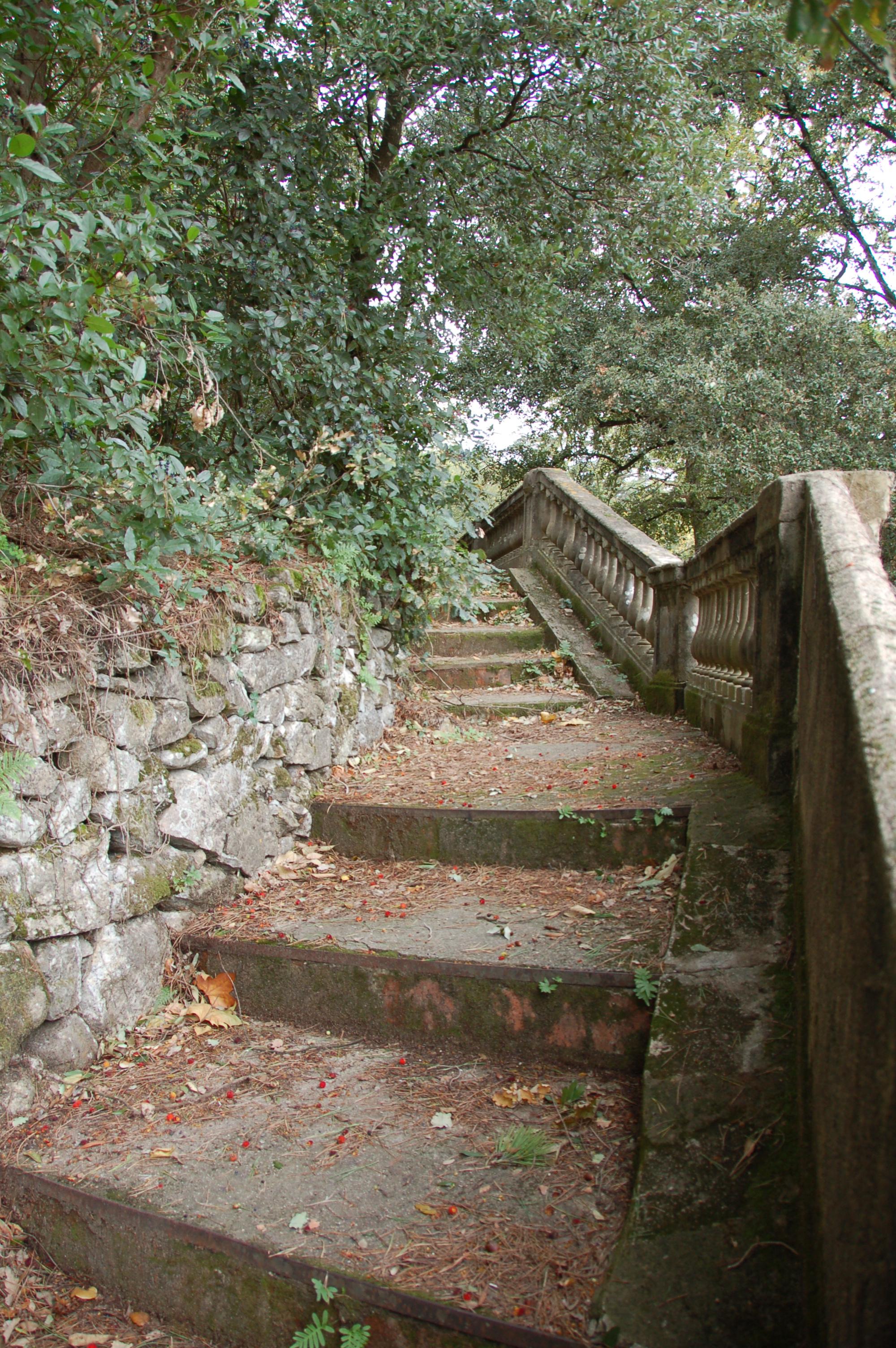 Escales Bosc
