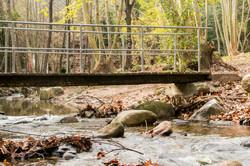 Pont sobre riu