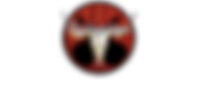 ons-logo2.png
