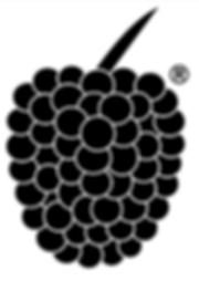 Himbeer-Logo-Schwarz.png