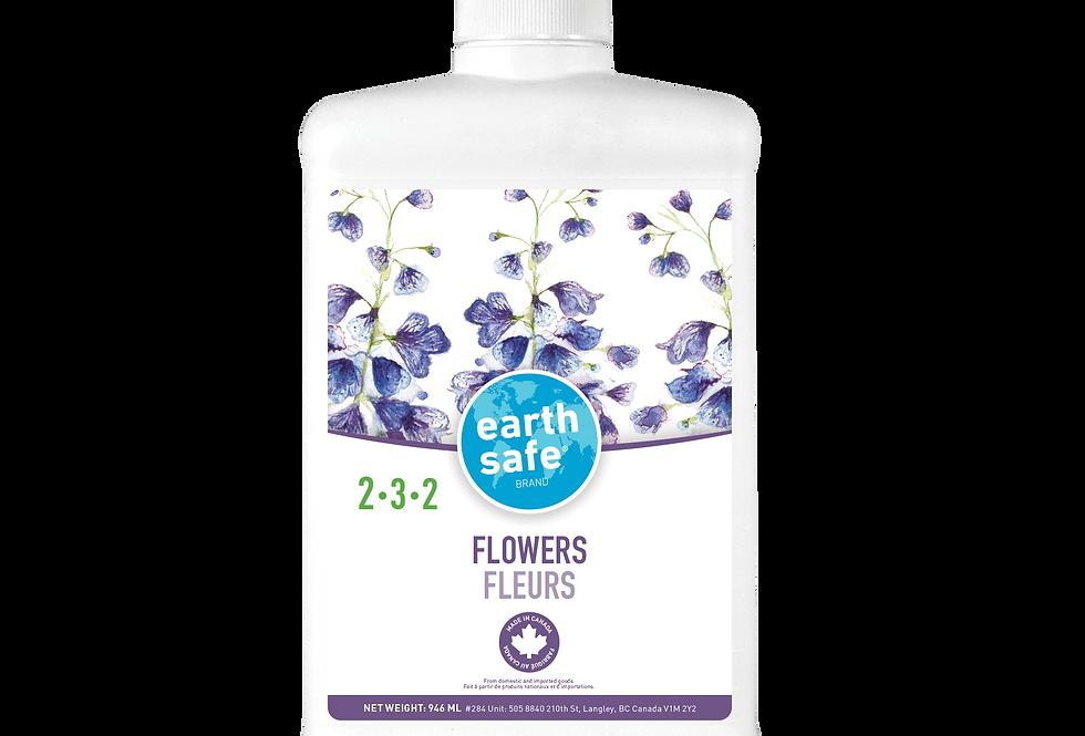 FLOWERS 2-3-2