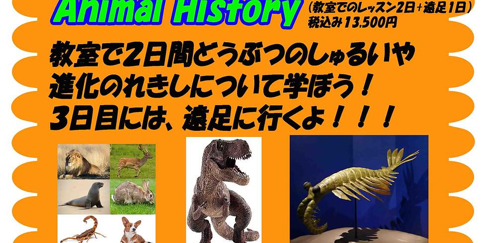 Animal History (1週間コース)