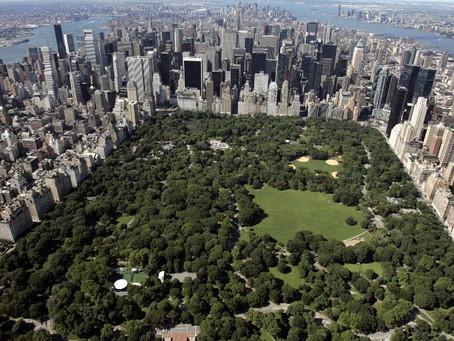 Нью-Йорк планирует мега-концерт с трансляцией на весь мир в честь окончания изоляции