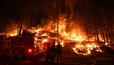 Калифорния потратит $ 500 миллионов на вырубку лесов, чтобы избежать пожаров