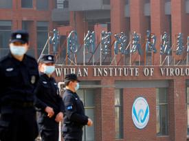 Республиканцы пришли к выводу, что коронавирус возник в китайской лаборатории, и произошла утечка