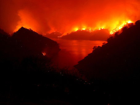Огонь в Калифорнии выжег в этом году больше земли чем за 67 лет